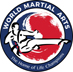 World Martial Arts
